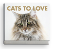 Cats to love